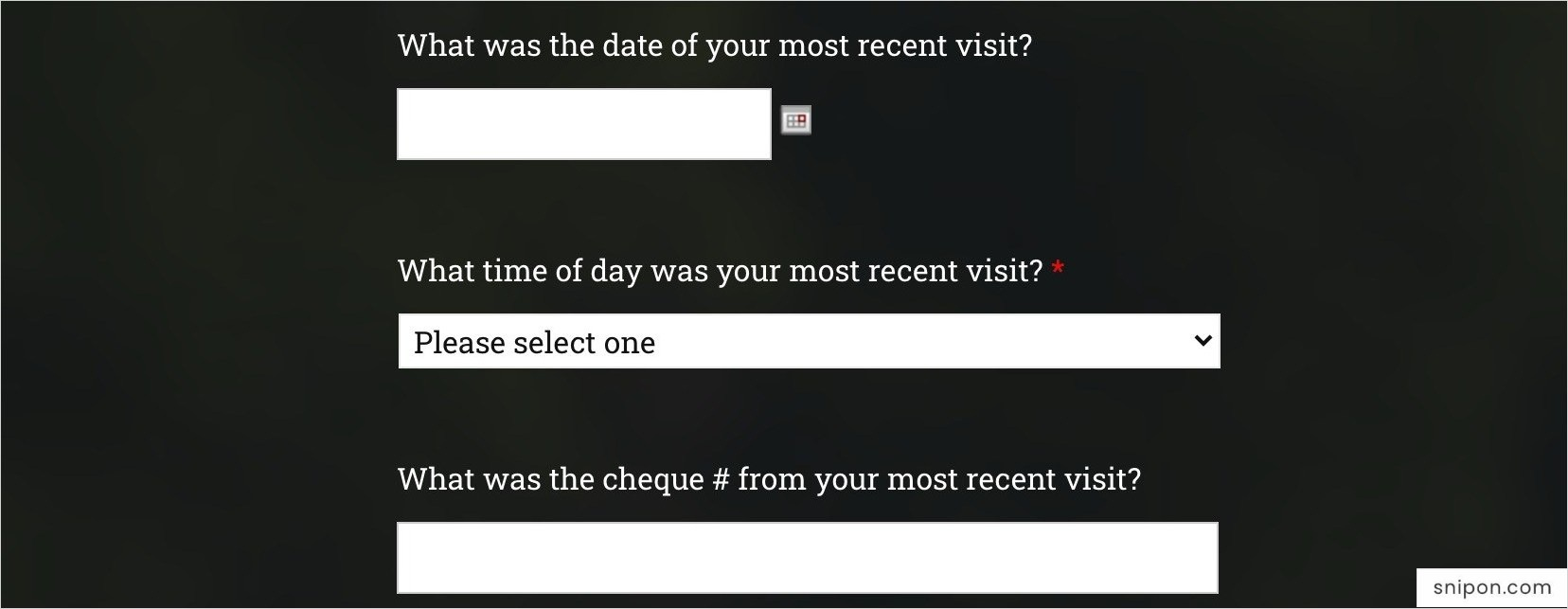 Enter Time, Date, & Cheque Number From Receipt - Turtle Jack's Survey