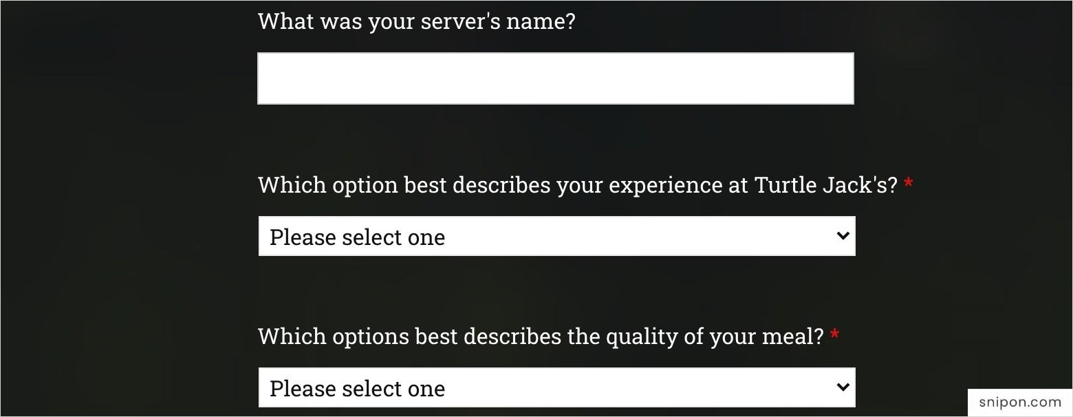 Enter Server's Name & Describe Your Experience & Meal's Quality - Turtle Jack's Survey
