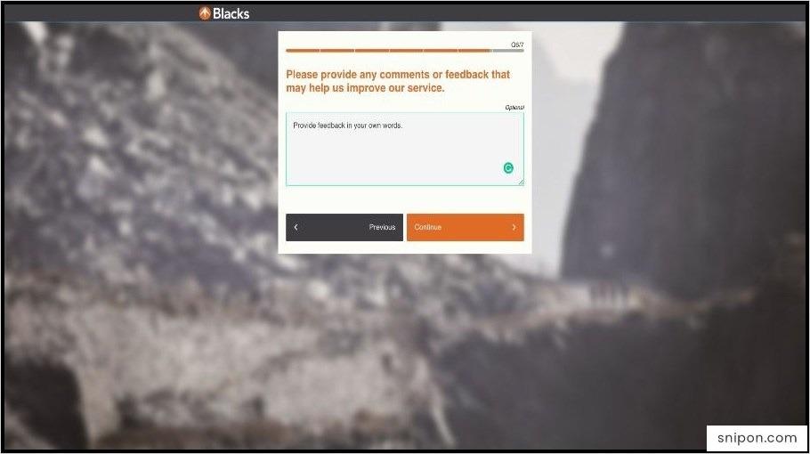 Provide Additional Comments - Skyline Chili Survey